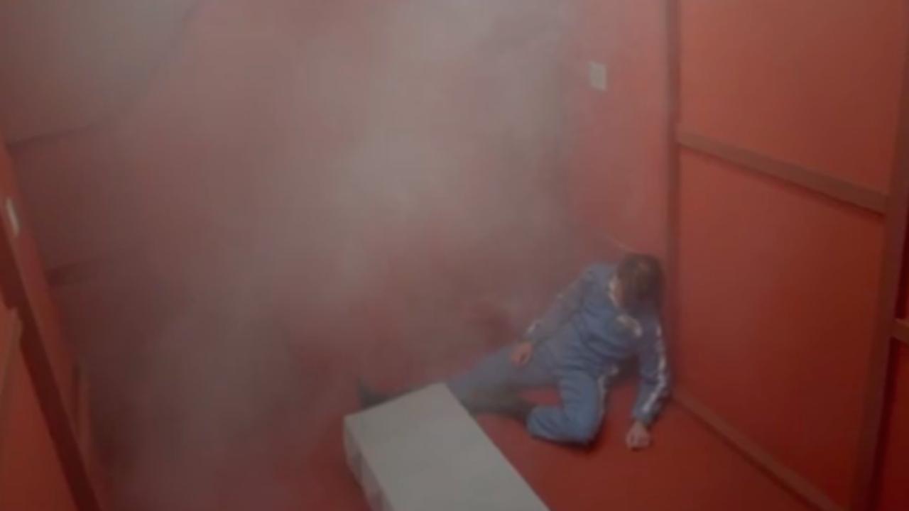 The Vaccines – Dream Lover (video ufficiale, testo e